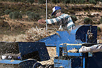 A Palestinian farmer harvests wheat in the West Bank village of Abu Falah, north of Ramallah, on June 11, 2011. Photo by Issam Rimawi