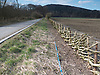 Hedge laying is a country skill, typically found in the United Kingdom and Ireland, which, through the creation and maintenance of hedges, achieves:<br />