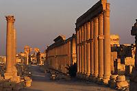 SIRIA - sito di Palmira(Tadmor)   grande colonnato