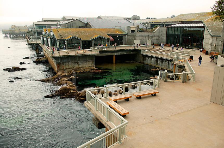 The Monterey Bay Aquarium, Monterey, California