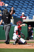 Umpire Sean Barber and Louisville Cardinals catcher Will Smith (30) ask for a check on a call during a game against the Cal State Fullerton Titans on February 15, 2015 at Bright House Field in Clearwater, Florida.  Cal State Fullerton defeated Louisville 8-6.  (Mike Janes/Four Seam Images)