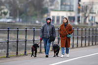 Pictured: Dog Walkers on Mumbles Sea Front, Swansea, Wales, UK. Thursday 31 January 2019<br /> Re: