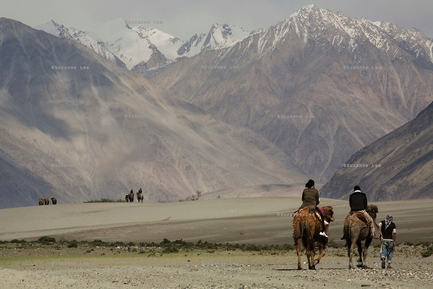 Tourists ride Bactrian camels across the desert sand dunes in Hundar. The camels are a legacy left behind by the caravans plying the trade routes between Punjab and China. Scenery of Nubra Valley, Ladakh on 4th June 2009. The valley of Ladakh is located in the Indian Himalayas, in the northern state of Jammu and Kashmir. Photo by Suzanne Lee