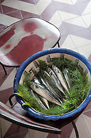 A bowl of freshly caught mackerel is placed on a chair in the kitchen