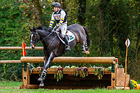 AUS-Sam Griffiths rides Annaghmore Valoner during the Cross Country for the CCI3*-L7YO. 2019 FRA-Mondial du Lion - FEI World Breeding Championships. Le Lion d'Angers. France. Saturday 19 October. Copyright Photo: Libby Law Photography