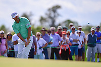 Padraig Harrington (IRL) chips on to 6  during round 1 of the Honda Classic, PGA National, Palm Beach Gardens, West Palm Beach, Florida, USA. 2/23/2017.<br /> Picture: Golffile | Ken Murray<br /> <br /> <br /> All photo usage must carry mandatory copyright credit (&copy; Golffile | Ken Murray)