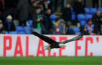 Crystal Palace's Kayla the Eagle takes flight prior to kick off <br /> <br /> Photographer Ashley Crowden/CameraSport<br /> <br /> The Premier League - Crystal Palace v Burnley - Saturday 13th January 2018 - Selhurst Park - London<br /> <br /> World Copyright &copy; 2018 CameraSport. All rights reserved. 43 Linden Ave. Countesthorpe. Leicester. England. LE8 5PG - Tel: +44 (0) 116 277 4147 - admin@camerasport.com - www.camerasport.com
