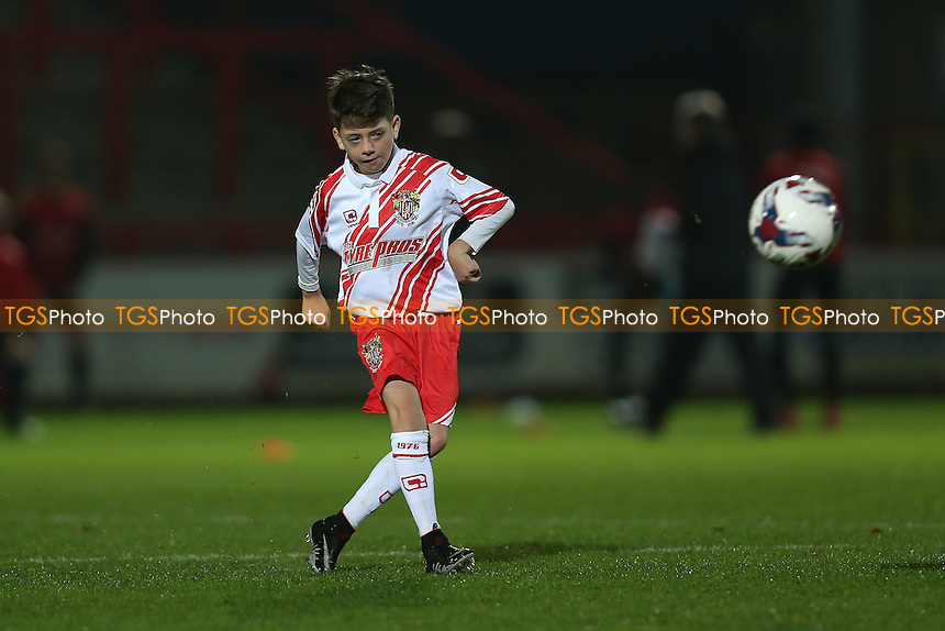 Stevenage mascot during Stevenage Youth vs Charlton Athletic Youth, FA Youth Cup Football at the Lamex Stadium on 15th November 2016