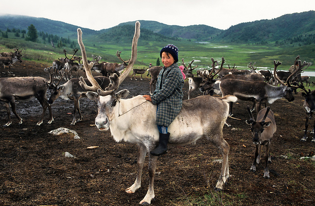 Young Tuvan girl riding a reindeer at Summer pastures at Todzhu. Republic of Tuva, Siberia, Russia.