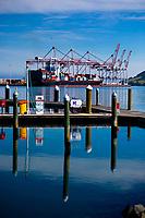 Port of Tauranga. Bay Of Plenty Regional Council photoshoot in Mount Maunganui, New Zealand on Friday, 23 November 2018. Photo: Dave Lintott / lintottphoto.co.nz