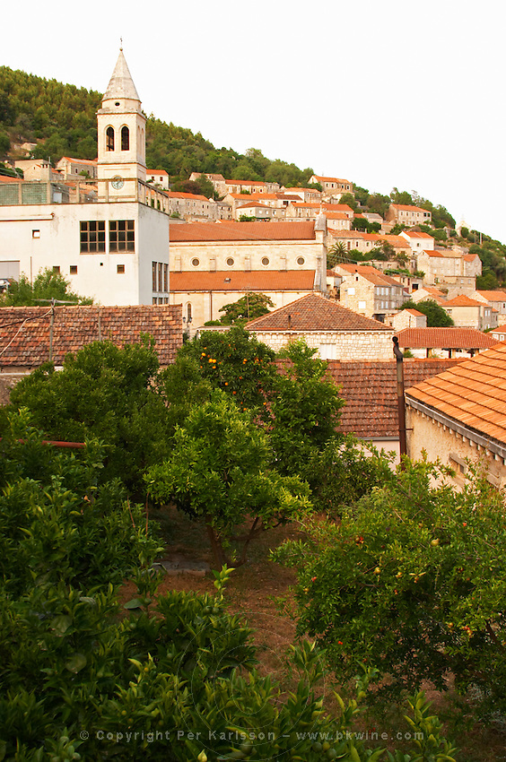 View from the winery over the village with an ugly disaffected concrete market building in the foreground, church and village houses. Toreta Vinarija Winery in Smokvica village on Korcula island. Vinarija Toreta Winery, Smokvica town. Peljesac peninsula. Dalmatian Coast, Croatia, Europe.