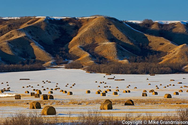 Bales and hills in winter<br /> Qu'Appelle Valley<br /> Saskatchewan<br /> Canada