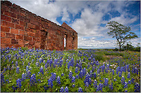 Northwest of Llano is an old town called Pontotoc. Around one of its old stone buildings, bluebonnets spring up every spring. This year was no different - a contrast in new and old in the Texas Hill Country.