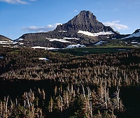 Mt. Reynolds as seen from Logan Pass,GLACIER NATIONAL PARK, Montana