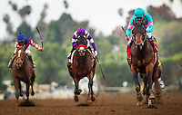 ARCADIA, CA - FEBRUARY 04: Royal Mo #1, ridden by Victor Espinoza defeats Irap #2, ridden by Mario Gutierrez and Sheer Flattery #5, ridden by Mike Smith to win the Robert B. Lewis Memorial Stakes at Santa Anita Park on February 4, 2017 in Arcadia, California. (Photo by Alex Evers/Eclipse Sportswire/Getty Images)