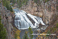 67545-09710 Gibbon Falls at Yellowstone National Park, WY