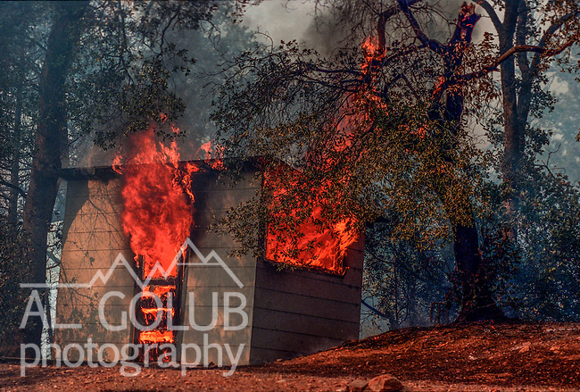 August 20, 1992 Angels Camp, California -- Old Gulch Fire— Outbuilding burns on Sheep Ranch Road. The Old Gulch Fire raged over some 18,000 acres, destroying 42 homes while threatening the Mother Lode communities of Murphys, Sheep Ranch, Avery and Forest Meadows.