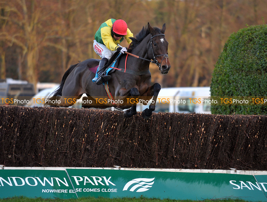 Sizing Europe ridden by A.E Lynch takes the last and goes on to win Sportingbet Tingle Creek Chase (Grade 1)  at Sandown Park Racecourse, Esher, Surrey - 03/12/2011 - MANDATORY CREDIT: Martin Dalton/TGSPHOTO - Self billing applies where appropriate - 0845 094 6026 - contact@tgsphoto.co.uk - NO UNPAID USE.