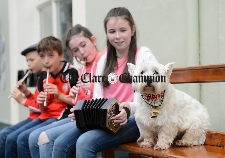 Michael and James Harnett performing with Amy and Leah Scanlan of Inagh watched by Daisy during Fleadh Cheoil na hEireann in Ennis. Photograph by John Kelly.