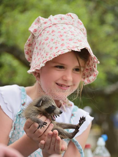Northern Raccoon (Procyon lotor), young girl holding baby raccoon, Texas, USA