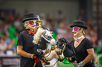 The Hobby Horse Display and Auction for fundraising for the Dressage Team to get to WEG. 2018 Bates Saddles New Zealand Dressage Championships. Manfeild Park, Feilding. Saturday 17 February. Copyright Photo: Libby Law Photography