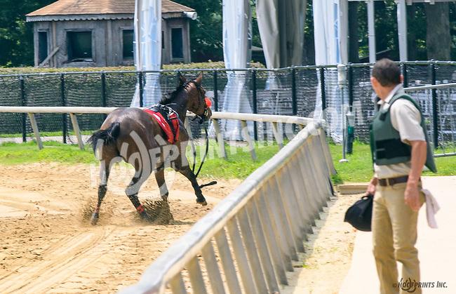 Run Kid Run running away at Delaware Park on 7/20/17