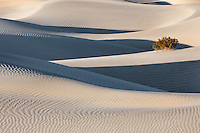 Interplay of shadows, lines, and light, Mesquite Dunes.