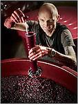 Thierry Constantin octobre 2016, vigneron éleveur © sedrik nemeth