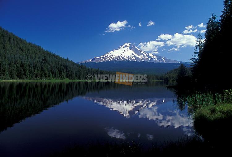 Trillium Lake and Mount Hood; Mt. Hood National Forest, Cascade Mountains, Oregon.