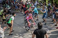 Nairo Quintana (COL/Movistar) & Vincenzo Nibali (ITA/Bahrain-Merida) up the Foza climb (1086m)<br /> <br /> Stage 20: Pordenone › Asiago (190km)<br /> 100th Giro d'Italia 2017