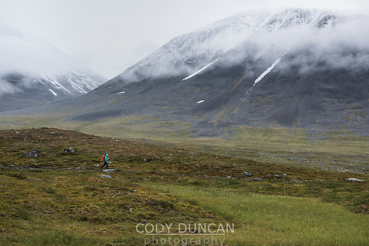 Female hiker hiking through mountain landscape near Sälka hut, Kungsleden trail, Lapland, Sweden
