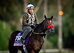 OCT 24: Breeders' Cup Juvenile Fillies entrant Lazy Daisy, trained by Doug F. O'Neill, gallops at Santa Anita Park in Arcadia, California on Oct 24, 2019. Evers/Eclipse Sportswire/Breeders' Cup