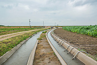 Siphon tubes irrigate corn fields near the Xcel Energy Pawnee Generating Station in Fort Morgan, Colorado, Tuesday, July 21, 2015.<br /> <br /> Photo by Matt Nager