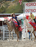 From left, Teri Vance and Christina Erny compete in a media exhibition race at the 56th annual International Camel &amp; Ostrich Races in Virginia City, Nev. on Friday, Sept. 11, 2015. <br /> Photo by Cathleen Allison