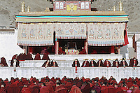 The head of the ceremonies of Labrang ( Yellow Hats) for this year, the reincarnation Jia Khenpo is reading scriptures for the assembly of graduated  monks, during the first week of Monlam Chenmo, the Great Prayer. Xiahe, China, February, 22, 2007.