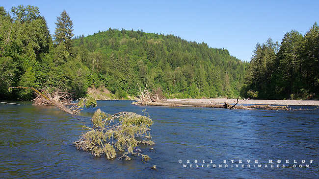 Large trees in the active channel of the river. People play on the beach at Oxbow Park.