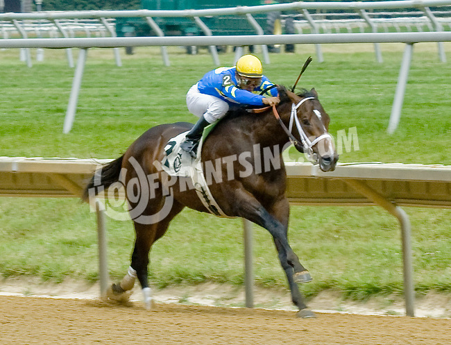 The Absolute One winning at Delaware Park on 6/17/12