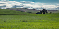 An old barn in the Palouse. The Palouse Is a region of where there are no continuous valleys, and the hills do not connect to make long ridges. These hills were not created by rivers and streams, as is most of our landscape, but formed more like sandunes, with winds depositing silt to form of some of the most fertile soil in the country.