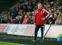 Swansea manager Alan Curtis on the touchline during the Barclays Premier League match between Swansea City and West Bromwich Albion played at the Liberty Stadium, Swansea on December 26 2015