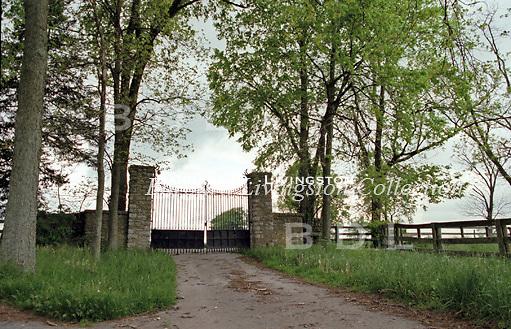 Man o' War, War Admiral, Fair Play, Mahubah, Glen Riddle Farm, Samuel D. Riddle, horse racing, racehorse, thoroughbred, Faraway Farm