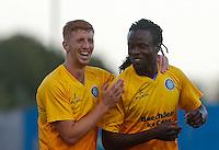 Basingstoke Town v Wycombe Wanderers - 28/07/2015