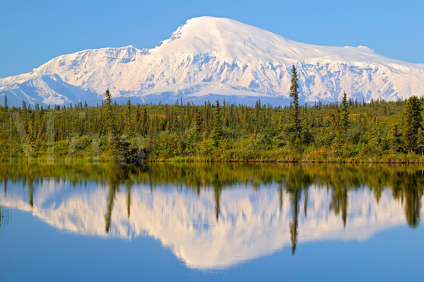 Mt. Sanford (16,237 feet) from Rock Lake along the Nabesna Road, Wrangell-St Elias National Park, Alaska