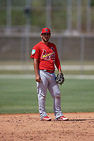 St. Louis Cardinals Jose Martinez (76) during a Minor League Spring Training Intrasquad game on March 28, 2019 at the Roger Dean Stadium Complex in Jupiter, Florida.  (Mike Janes/Four Seam Images)