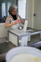 Europe/France/Centre/Indre-et-Loire/ Sepmes:  Claire Proust prépare le fromage de chèvre AOP Sainte-Maure de Touraine  , Ferme: Le Cabri au lait de  Sébastien Beaury & Claire Proust, Ferme pédagogique,  Eleveurs caprins, Fromagers producteurs de fromages bio : AOP Sainte-Maure de Touraine  //France, Indre et Loire, Sepmes:  Claire Proust, prepares goat cheese AOP, Sainte-Maure de Touraine, Farm:  The Cabri milk Sébastien Beaury & Claire Proust, Educational farm, goat breeders, producers of organic cheeses Cheese: AOP Sainte-Maure de Touraine<br />  Auto N: 2013-129