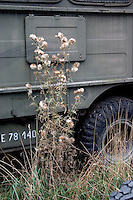 Side of a military truck with thistle at the site of a mock up of a military mess hall in Poland where soup and bread is served.  Rawa Mazowiecka  Central Poland