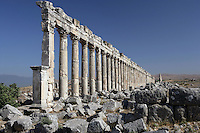 Apamea (Afamia), erected by Trajan (AD 52 ? 117) who ordered its complete reconstruction after the earthquake of AD 115 : View of the ruined colonnade ordered by Marcus Aurelius (AD 161 ? 180) and rubbles. Apamea. Syria Picture by Manuel Cohen