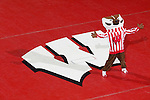 MADISON, WI - JANUARY 19: Mascot Bucky Badgers of the Wisconsin Badgers poses prior to the wrestling meet against the Penn State Nittany Lions at the Field House on January 19, 2007 in Madison, Wisconsin. The Badgers beat the Nittany Lions 17-16. (Photo by David Stluka)