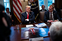 U.S. President Donald Trump listens beside Patrick Shanahan, acting U.S. secretary of defense, right, during a cabinet meeting in the Cabinet Room of the White House, on Wednesday, Jan. 2, 2019 in Washington, D.C. Photo Credit: Al Drago/CNP/AdMedia