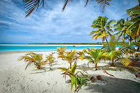 A motor boat cruises the sea in front of One Foot Island beach, Aitutaki Lagoon, Cook Islands.