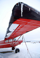 Wingtip icicles on a Piper Super Cub at Merrill Field, Alaska.